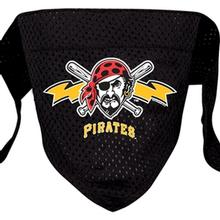 Pittsburgh Pirates Mesh Dog Bandana