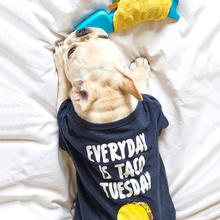 fabdog® Taco Tuesday Dog Shirt - Heather Blue