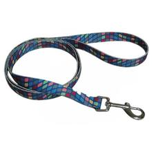 Pop Square 5' Dog Leash - Blue