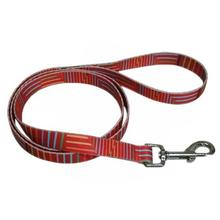Pop Stripe 5' Dog Leash - Orange