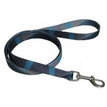 Pop Stripe Waves 5' Dog Leash - Blue