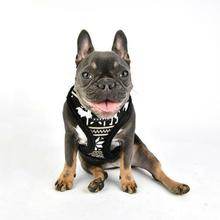 Prancer Basic Style Dog Harness by Puppia - Black