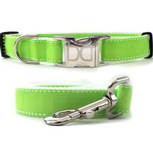 Preppy in Lime Dog Collar and Leash Set by Diva Dog