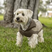 Preppy Natural Alpaca Dog Sweater by Alqo Wasi