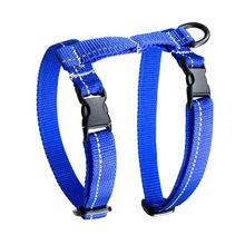 Primary Kitty Cat Harness - Royal Blue