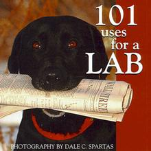 101 Uses for a Lab Book for Humans