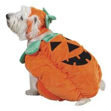 Pumpkin Pooch Costume for Dogs by Zack and Zoey