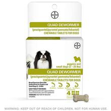 Quad Dewormer - Over-the-Counter Dewormer for Dogs by Bayer