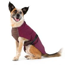 Rain Paw Dog Raincoat by Gold Paw - Beetroot/Graphite