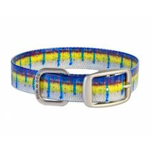 KOA Fish Dog Collar by Dublin Dog - Blue Marlin