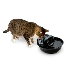 Raindrop™ Durable Ceramic Drinking Fountain by Pioneer Pet