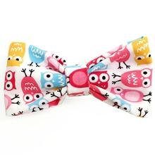Silly Owls Dog Bow Tie from Daisy and Lucy