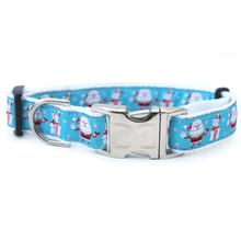 Snowflake Surprise Dog Collar by Diva Dog