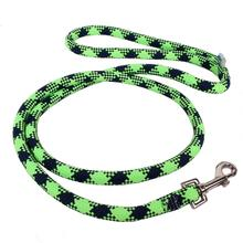 Round Braided Team Colors Dog Leash by Yellow Dog - Blue and Green