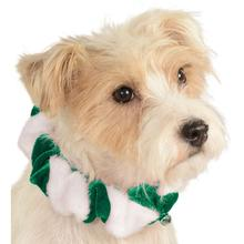 Rubies Candy Cane Pet Scrunchie - Green