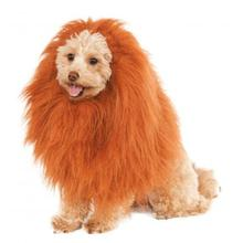 Rubies Deluxe Lion's Mane Dog Costume