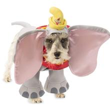 Disney Dumbo Dog Costume by Rubie's