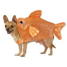 Rubies Goldfish Dog Costume
