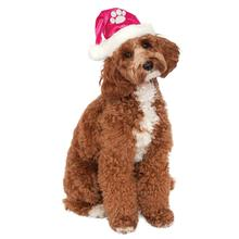 Rubie's Santa Dog Hat - Hot Pink