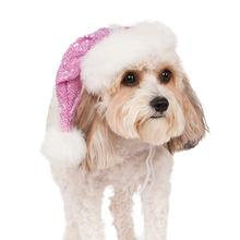 Rubie's Sequin Santa Dog Hat - Pink
