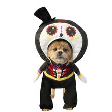 Rubies Walking Day of the Dead Man Dog Costume