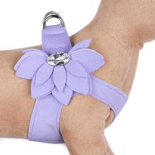 Water Lilly Step-In Dog Harness by Susan Lanci - French Lavender