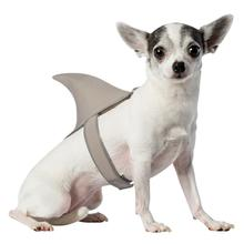 Shark Fin Dog Costume by Rasta Imposta