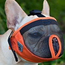 Short Snout Dog Muzzle by Canine Friendly - Orange