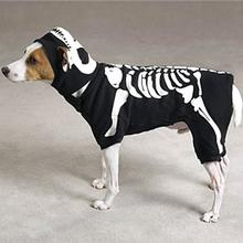 Skeleton Glow Bones Dog Costume by Casual Canine - Black