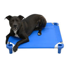 Solid Color Premium Weave Dog Cot - Blue
