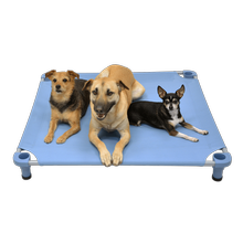Solid Color Premium Weave Dog Cot - Sistine Blue