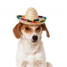 Sombrero Dog Hat by Rubies - Multi-colored