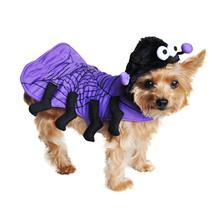 Spider Dog Costume by Doggie Design