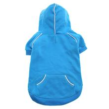 Sport Dog Hoodie by Doggie Design - Blue Curacao