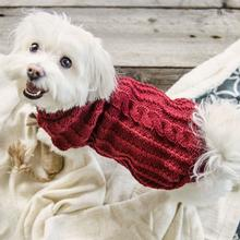 St. Moritz Dog Sweater - Red Wine