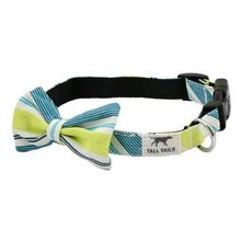 Tall Tails Dog Bow Tie - Spring Stripe