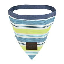 Tall Tails Reversible Dog Bandana - Spring Stripe