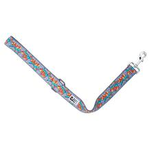 Graffiti Wide City Dog Leash by RC Pets