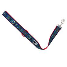 Feeling Folksy Wide City Dog Leash by RC Pets