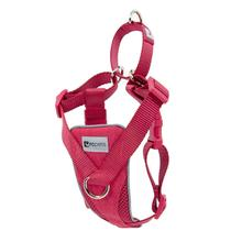 Tempo No Pull Dog Harness by RC Pet - Heather Azalea