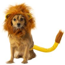 The Lion King Simba Dog Costume Accessory Set