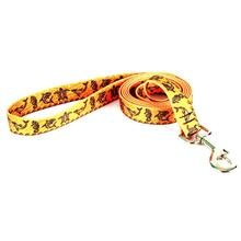 Tribal Seas Dog Leash by Yellow Dog - Orange