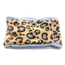 Oscar Newman Wild Child Dog Belly Band - Leopard