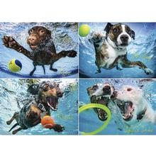 Underwater Dogs 2 Puzzle for Humans