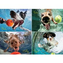 Underwater Dogs Puzzle for Humans - Play Ball