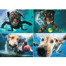 Underwater Dogs Puzzle for Humans - Splash