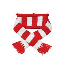 Urban Stripe Dog Scarf by Dogo - Red
