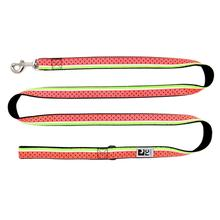 Watermelon Dog Leash by RC Pet