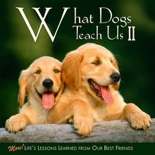 What Dogs Teach Us II More Book for Human; Life's Lessons Learned from Our Best Friends