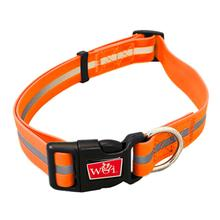 Wigzi Waterproof Dog Collar - Neon Orange